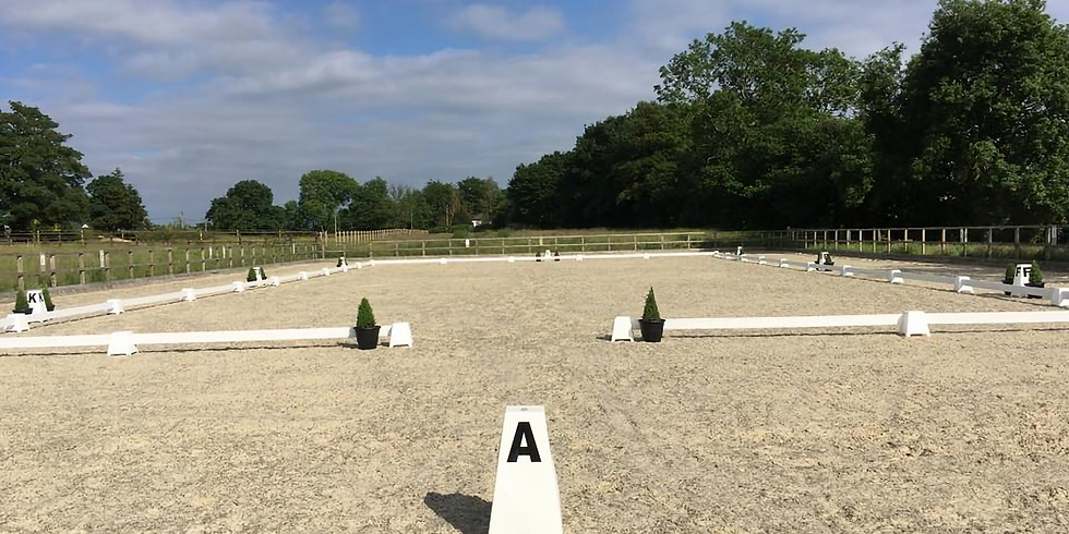 CANCELLED - FLATWORK OR POLEWORK WITH TAMSIN ADDISON