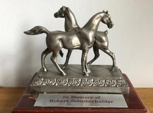 Sommerhalder Points & Trophies Explained