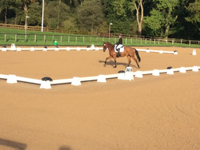 Well into it at Wellington: Competing in the Area 6 Winter Dressage Competition