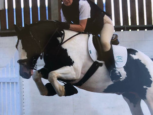Jumping - Online Showing Show
