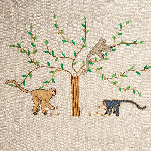 Monkey In Fig Tree