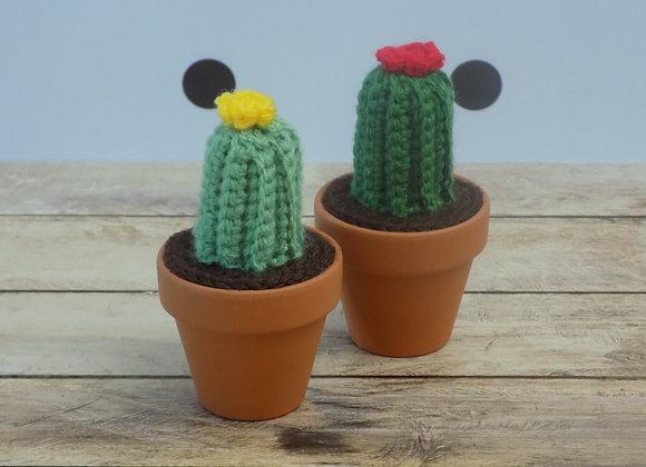 Cactus long