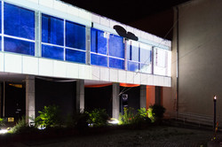 Live Projection Mapping