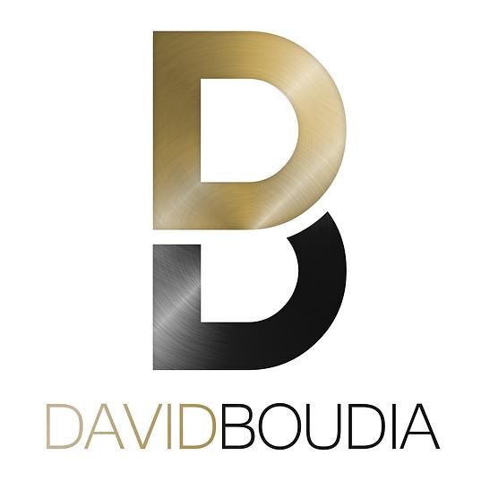 David Boudia - Logo