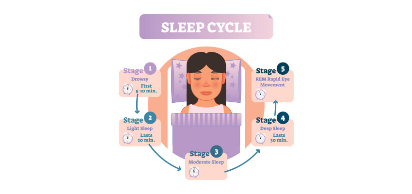 An infographics of  five stages of sleep: stages 1, 2, 3, 4, and REM (rapid eye movement) sleep | Balanced Wheel