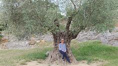 me under olive tree.jpg