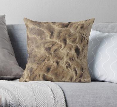 sandy cushion.JPG