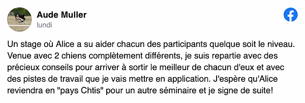 Commentaire 2.png