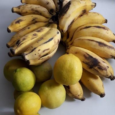 Burro Bananas and (seeded) Key Limes