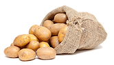frische-kartoffeln-vom-bauern_iStock_000