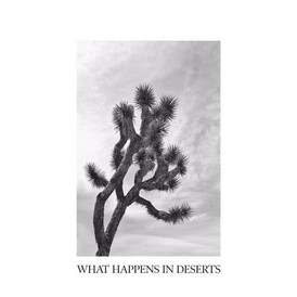 What Happens in Deserts - Hope