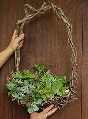 succulent_wreath_workshops_byronbay.jpg