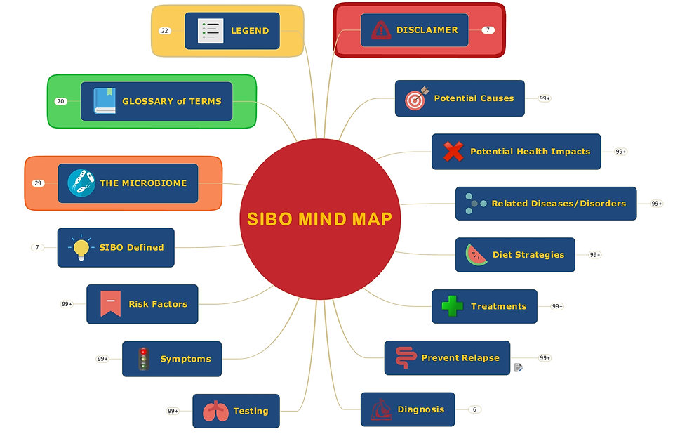 THE SIBO MIND MAP2 final (2).jpeg