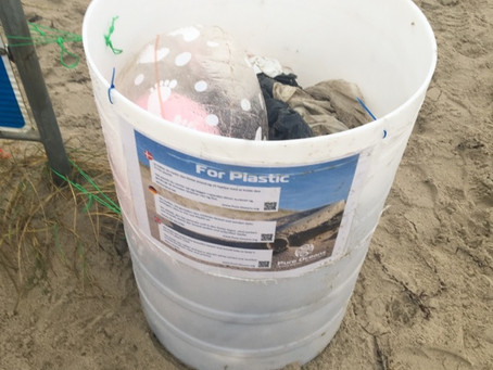 Successful plastic collection at Henne Beach, Denmark