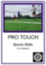 pro touch.png