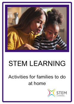 STEM FUN ACTIVITIES.png