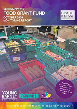 Space2Grow Front Page Report (1).jpg