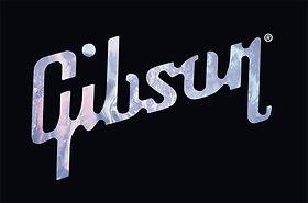 Gibson Guitars - Brian Quinn