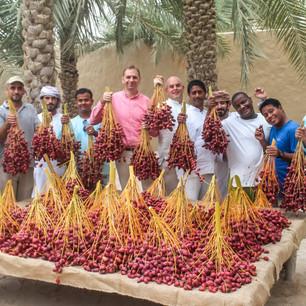 Сезон сбора урожая фиников в Six Senses Zighy Bay, Оман/ ОАЭ