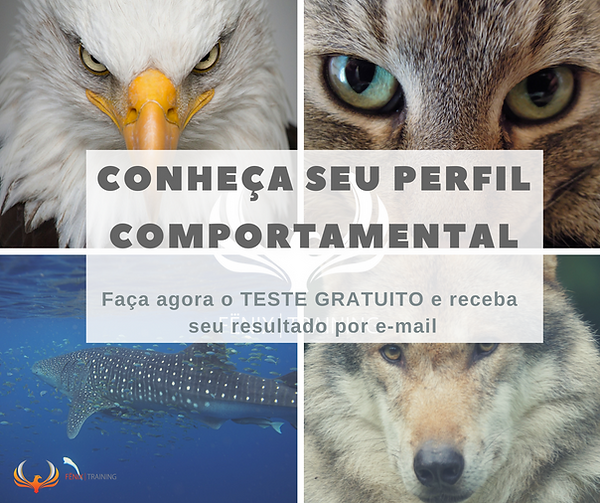CONHEÇA_SEU_PERFIL_COMPORTAMENTAL.png