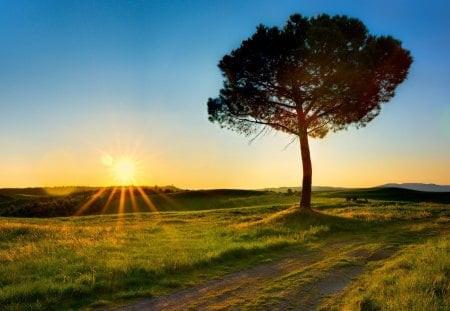 ธรรมชาติ คือธรรม โดย ปิยโสภณ