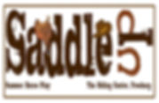 saddle up summer horse play logo.jpg
