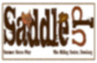 saddle up summer horse play logo_edited.