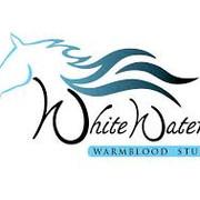 White Waters Stud