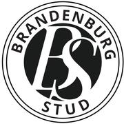 Brandenburg Stud