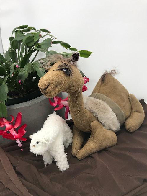 Camel and Sheep