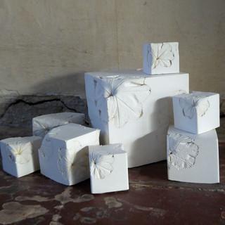 Cubic Specimens i (2020)