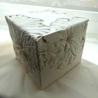 Cube Specimen ii