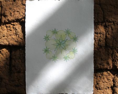Nature Mandala iii (2021)