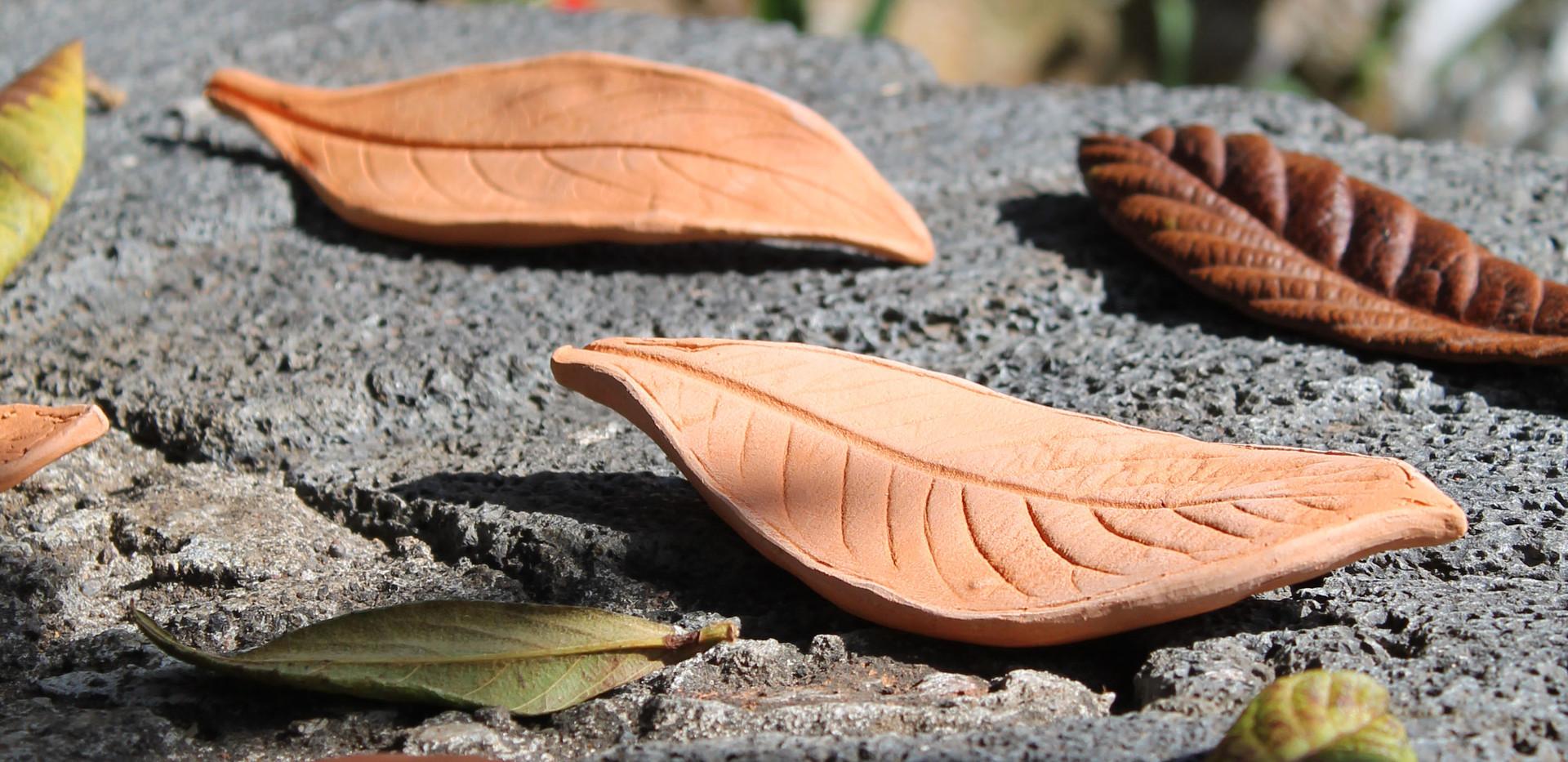 Ceramics Leaves (2021)