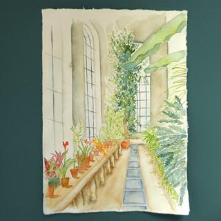 Botanics Gardens Study (2021)
