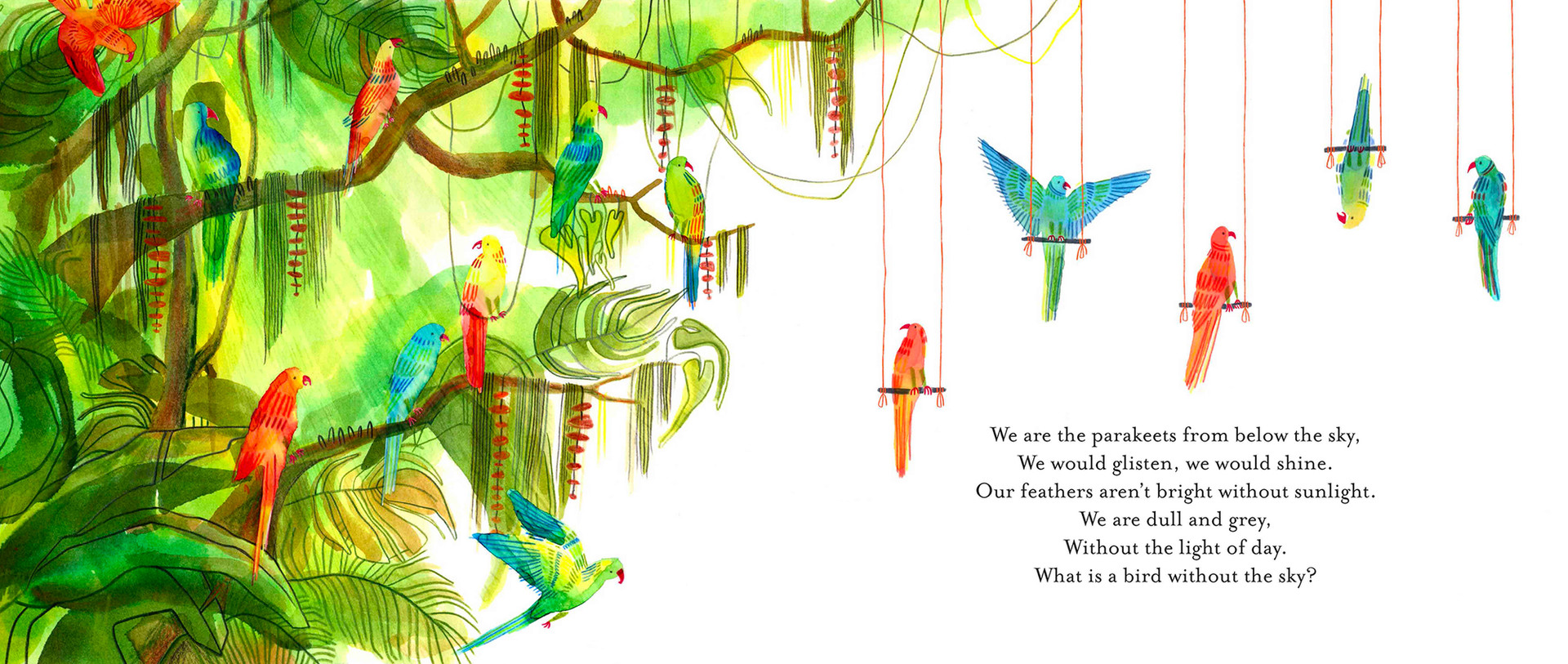 'Parakeets' Inside artwork for From Above