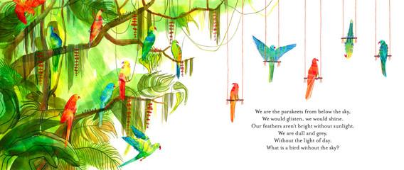 'Parakeets' Inside artwork for From Above