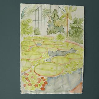 Botanic Gardens Study (2021)