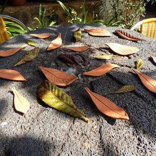Bare leaves installed (2021)
