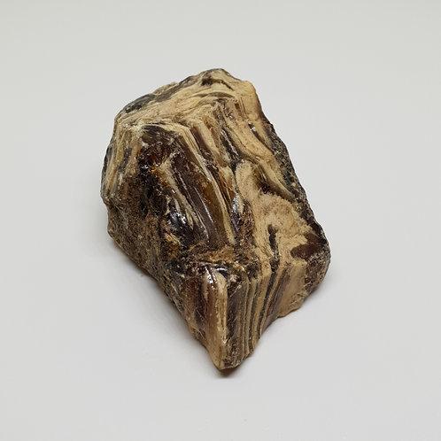 Blauer Bernstein Wood Amber 15,2g - Energetisch
