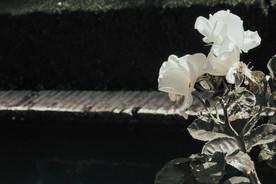 granada, spain | el alhambra