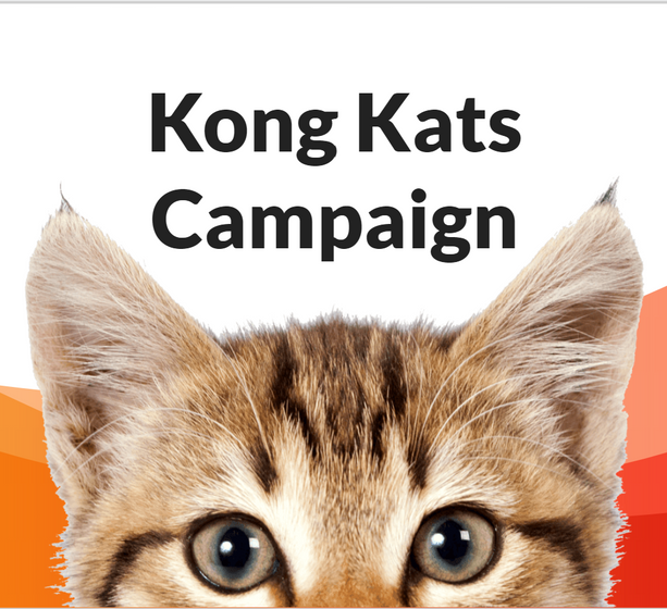 KongKats Campaign