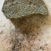 Pigment and stone from the Karoo