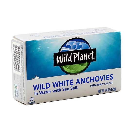 Wild Planet® Wild White Anchovies