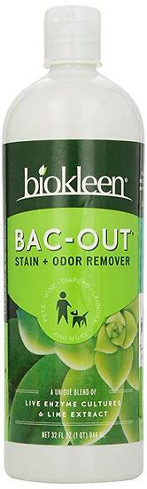 Stain & Odor Remover