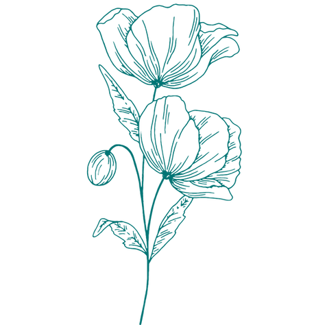 flower.2.png