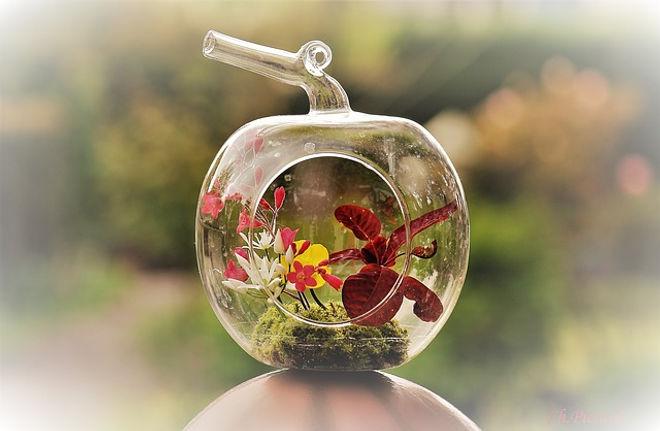 flower-2287883_640.jpg