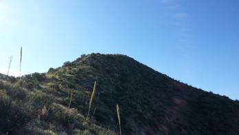 W7A/CO-068 (Shope's Peak)