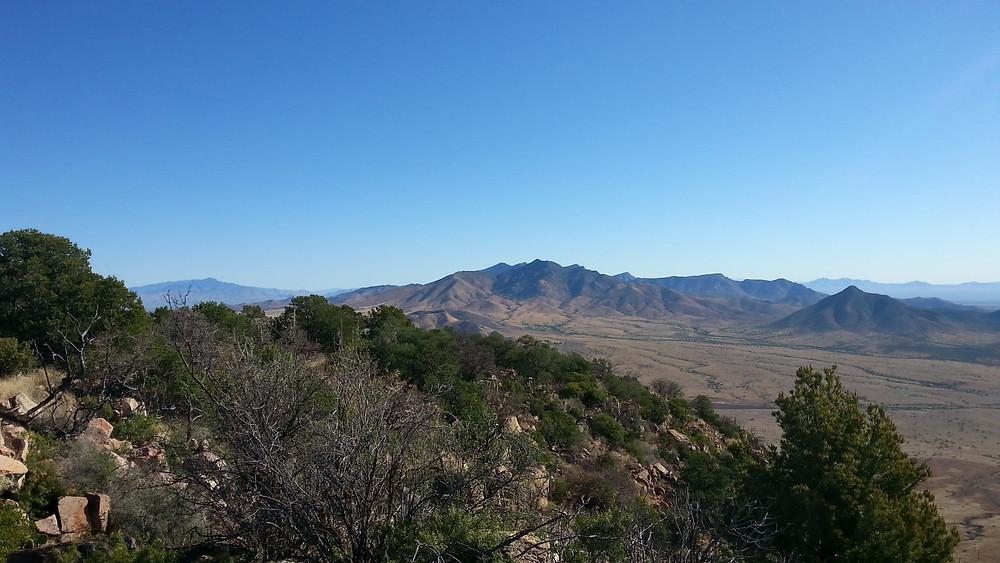 Looking toward the Whetstone Mountains.
