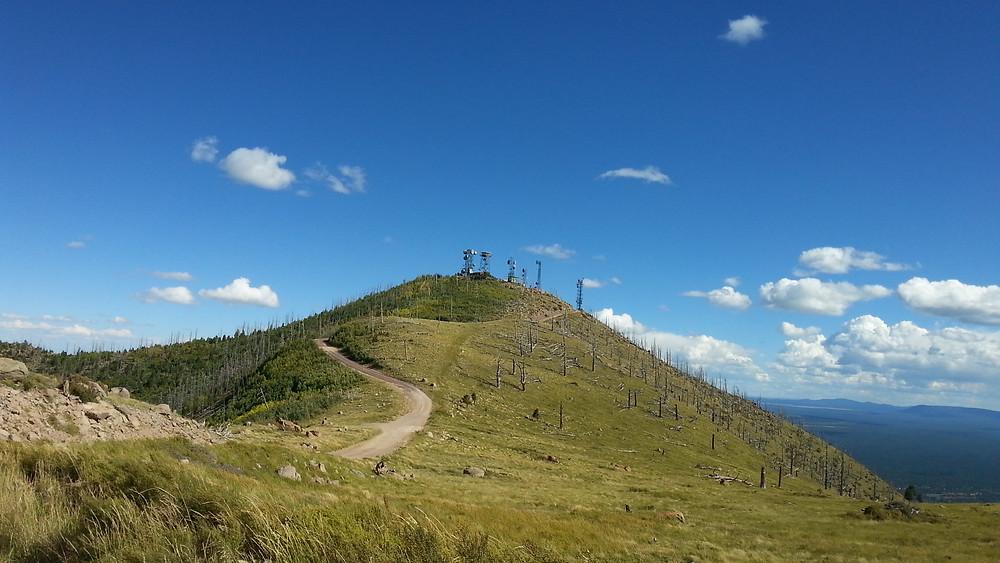 Mt Elden.